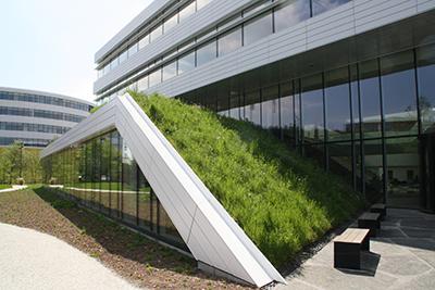Dachbegrünung Gründach Fassadenbegrünung Fertigrasen Terrassenbelag Mostviertel Garten NÖ